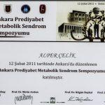 Prof. Dr. Alper Celik Sertifika 14